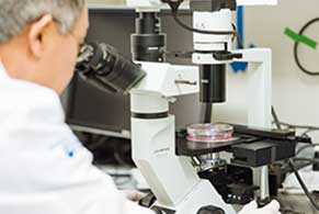 Researcher in a laboratory looking through a microscope.