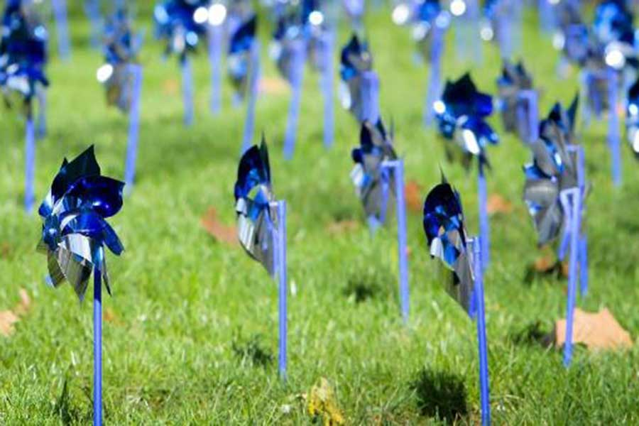 Blue and silver pinwheels aligned in a field of grass